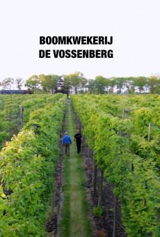 Vossenberg filmposter.001
